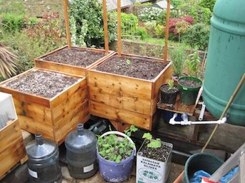 How To Make A Genuinely Self Watering Container Garden